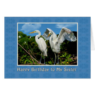 Birthday, Sister, Two Great Egrets Card