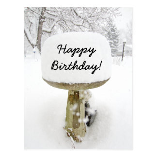 Birthday Snow Cake Postcard