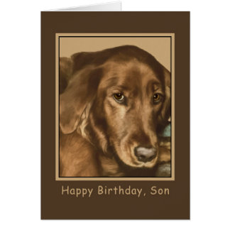 Birthday, Son, Golden Irish Dog Card