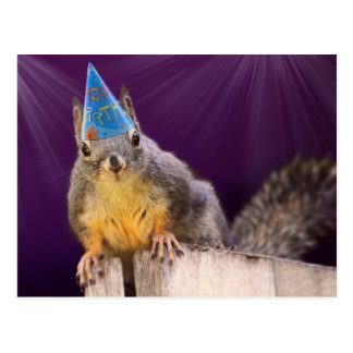 Birthday Squirrel Photo Postcard