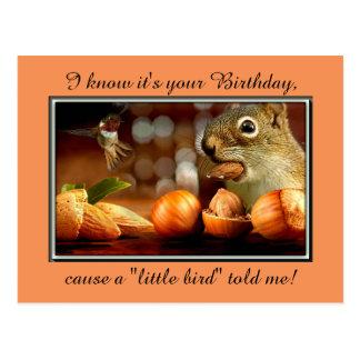 Birthday Squirrel Postcard