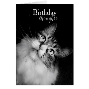siberianmom Birthday Thoughts from a Cat's Perspective (card) Card