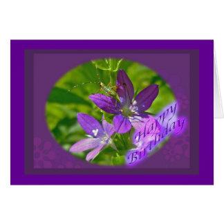 Birthday Venus Looking Glass Wildflower Floral Card