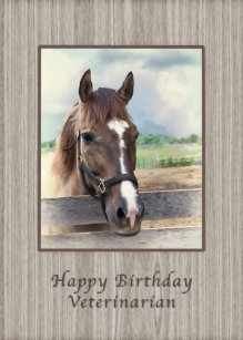 Birthday Veterinarian Brown Horse With Bridle Card