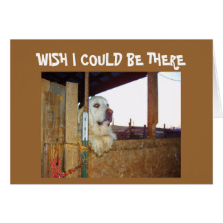 BIRTHDAY-WISH I COULD BE THERE CARD