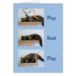 Birthday Wishes for Cat People Greeting Card