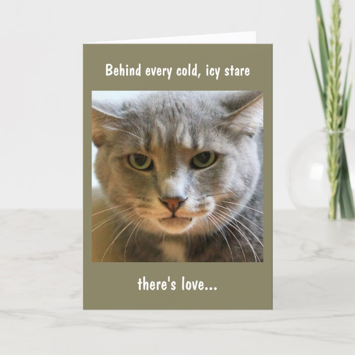 Brilliant Birthday Wishes From The Cat Card Zazzle Com Personalised Birthday Cards Epsylily Jamesorg