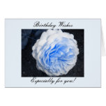 Birthday Wishes... Greeting Card