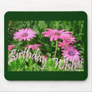 Birthday Wishes Pink Daisies Mouse Pad