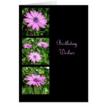 Birthday Wishes Triptych Greeting Card