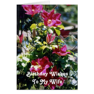 Birthday Wishes, Wife, pretty Clematis blooms . Card