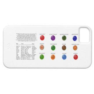 Birthstone Chart iPhone SE/5/5s Case