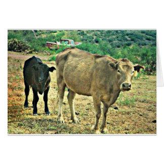 Bisbee Cows Card