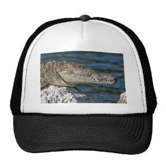 biscayne-national-park-80-dangerous-water trucker hat