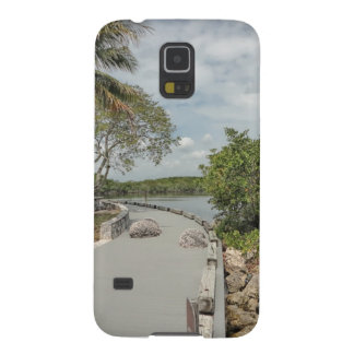 Biscayne National Park phone case