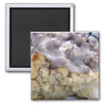 Biscuits & gravy fridge magnet