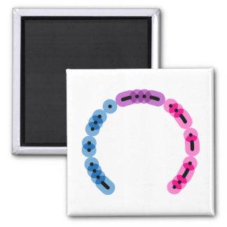 Bisexual Morse Code Arc Square Magnet