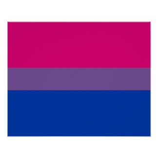 Bisexuality flag Poster