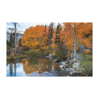 Bishop Creek. Outlet and fall color Canvas Print