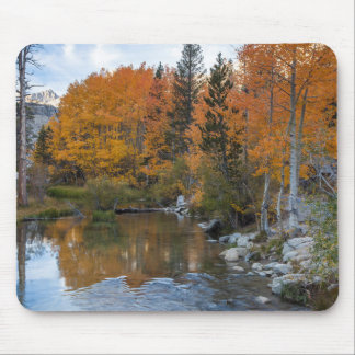 Bishop Creek. Outlet and fall color Mouse Pad