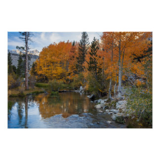 Bishop Creek. Outlet and fall color Poster