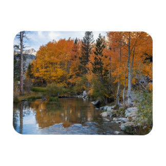 Bishop Creek. Outlet and fall color Rectangular Photo Magnet