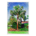 Bismarckia nobilis palm tree, color pencil drawing posters