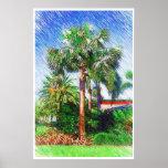 Bismarckia nobilis palm tree, color pencil drawing posters