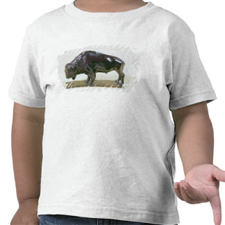 Bison, 1907 shirt
