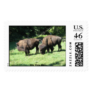 Bison Alta Vista Farm Postage Stamp