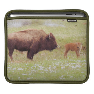 Bison and Calf in Yellowstone National Park Sleeve For iPads