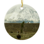 Bison at Grand Teton National Park Double-Sided Ceramic Round Christmas Ornament