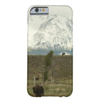 Bison at Grand Teton National Park Photography Barely There iPhone 6 Case