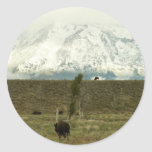 Bison at Grand Teton National Park Photography Classic Round Sticker