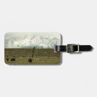 Bison at Grand Teton National Park Photography Luggage Tag