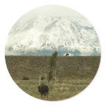 Bison at Grand Teton National Park Round Sticker