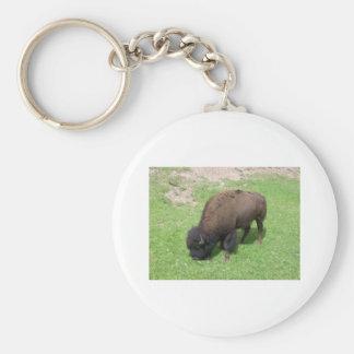 Bison Basic Round Button Keychain