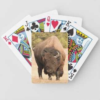 Bison Bicycle Playing Cards