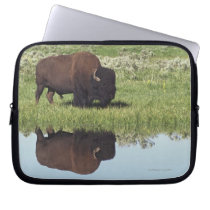 Bison (Bison Bison) On Grassy Meadow Computer Sleeve