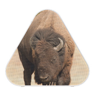 Bison Bluetooth Speaker