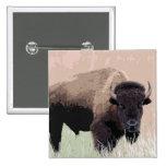 Bison / Buffalo 2 Inch Square Button
