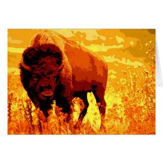 Bison / Buffalo Cards