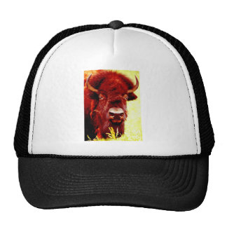 Bison / Buffalo Face Trucker Hat