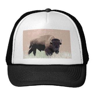 Bison / Buffalo Hat