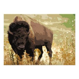 Bison / Buffalo Invitation
