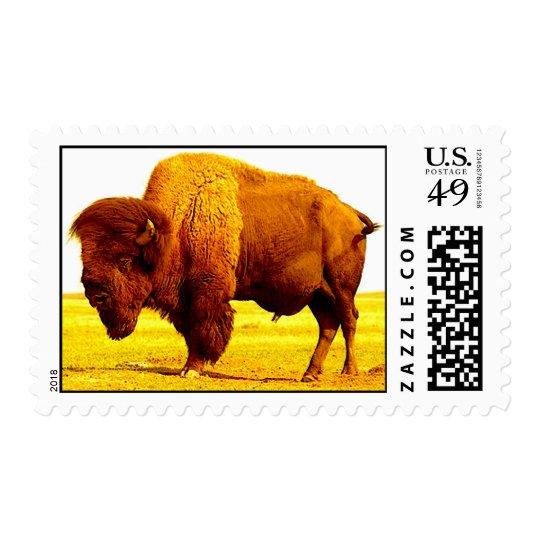 Bison / Buffalo Postage Stamps
