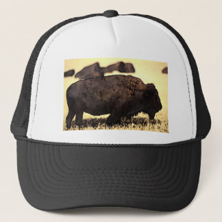 Bison Buffalo Trucker Hat