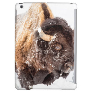 Bison bull foraging in deep snow iPad air cover