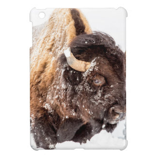 Bison bull foraging in deep snow iPad mini covers