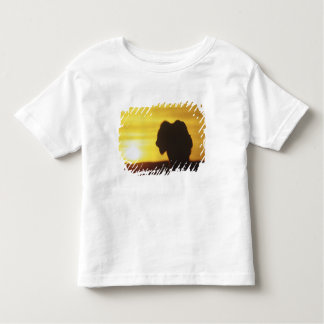 Bison bull sihouette at Theodore Roosevelt Toddler T-shirt